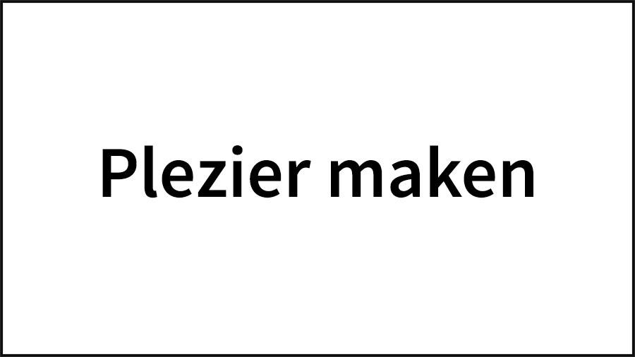 16_NL-CI-Plezier-Maken-copy